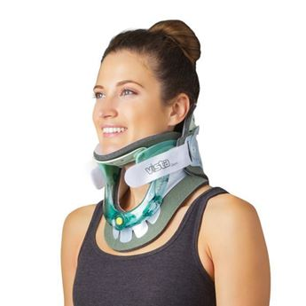 Picture of ASPEN VISTA MULTIPOST COLLAR