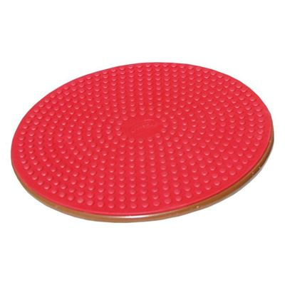 Picture of OPC WOBBLE BOARD