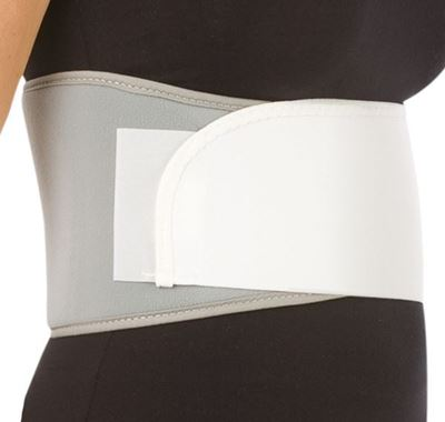 Picture of UNIVERSAL RIB BELT